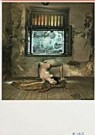 -  Saudek/ Model - Postcard -  F1718-1