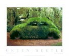 Stanislav Tuma (1950-2005)  -  Green Beetle - Postcard -  PS333-1