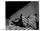 Gijs Woldhek  -  Tokkel sfinx - Postcard -  PS425-1