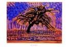 Piet Mondrian (1872-1944)  -  De blauwe boom - Postcard -  PS824-1