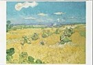 Vincent van Gogh (1853-1890)  -  van Gogh/ Wheat field - Postcard -  QA090-1