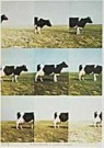Jan Cremer (1940)  -  Cremer/CINC/Dutch landscape. - Postcard -  QA172-1
