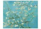 Vincent van Gogh (1853-1890)  -  Amandelbloesemtakken, 1890 - Wenskaarten-set -  QA371-1
