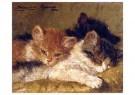 H. Ronner-Knip (1821-1909)  -  The sleeping kittens, 1902 - Wenskaarten-set -  QA389-1