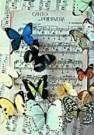 Letizia Volpi  -  Song of spring - Postcard -  QC257-1
