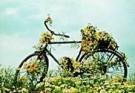 Rennes van de Riet (1961)  -  Flowerbike - Postcard -  QC299-1