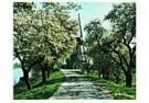 Gregoir Hoppenbrouwers  -  Beesd - Postcard -  QC303-1