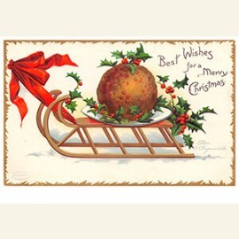 Best wishes for a merry christmas