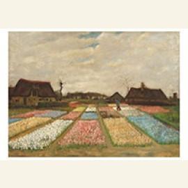 Flower Beds in Holland / Bulb Fields, 1883