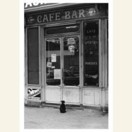 Cafe Cat Paris 1975