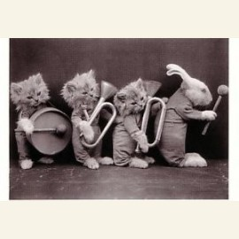 Dierenorkest