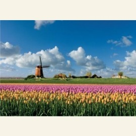 Lente in Holland