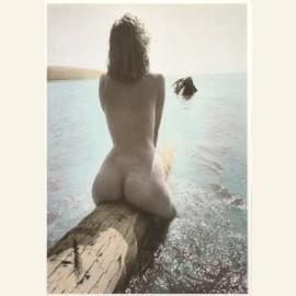 J.P.Muhlstein/Tropical Dream