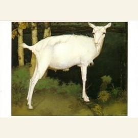 J. Mankes/Jonge witte geit