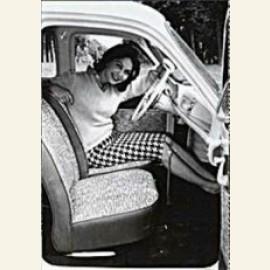 De vrouw en haar auto